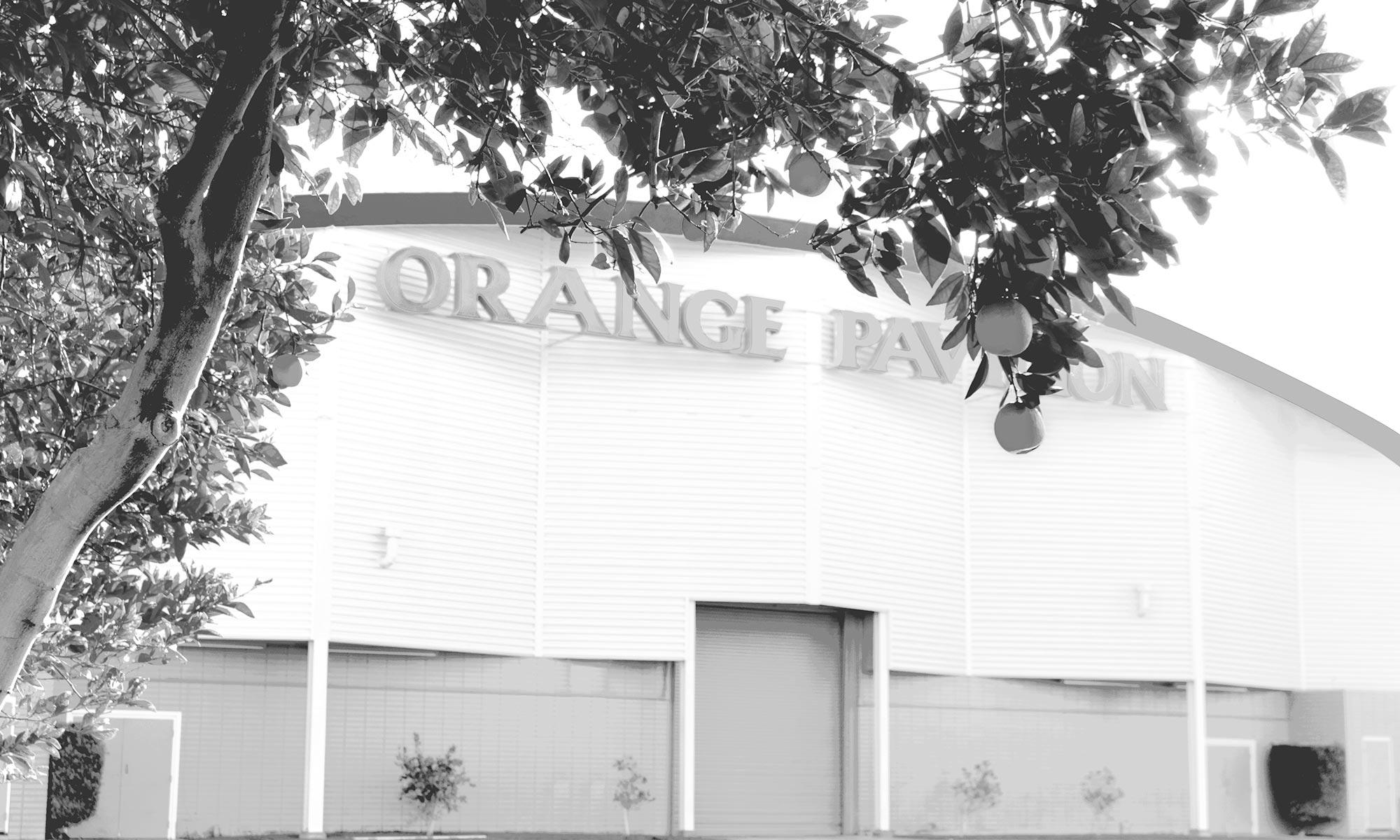 orange show image